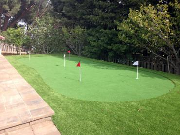 Artificial Grass Photos: Lawn Services Thornton, California Indoor Putting Greens, Backyard Design