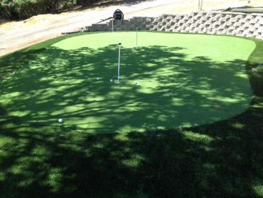 Artificial Grass Photos: Outdoor Carpet Armona, California Putting Green Flags, Backyard Landscaping