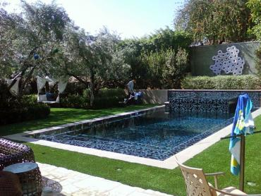 Artificial Grass Photos: Outdoor Carpet Byron, California Landscape Design, Pool Designs