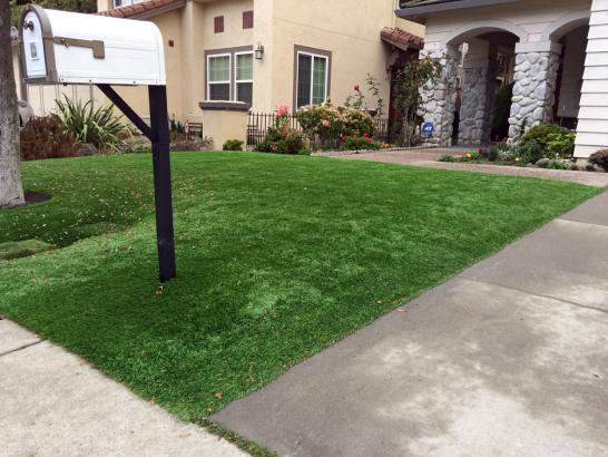 Artificial Grass Photos: Outdoor Carpet Camp Nelson, California Backyard Deck Ideas, Landscaping Ideas For Front Yard
