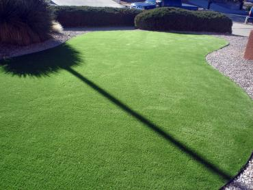 Artificial Grass Photos: Outdoor Carpet Salida, California Lawn And Garden, Front Yard Landscape Ideas