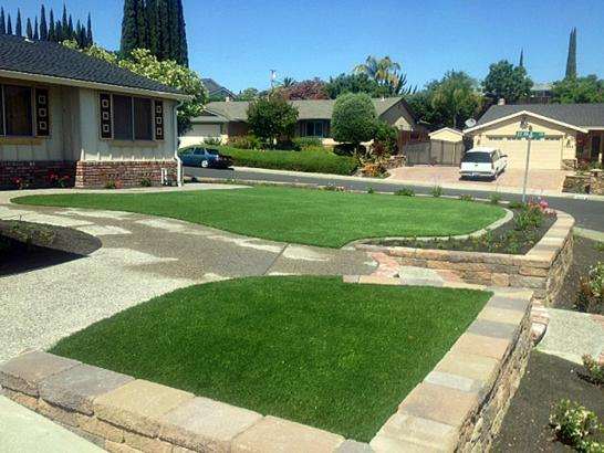 Artificial Grass Photos: Outdoor Carpet Yettem, California Backyard Deck Ideas