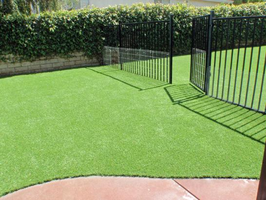 Artificial Grass Photos: Plastic Grass Copperopolis, California Dog Grass, Landscaping Ideas For Front Yard