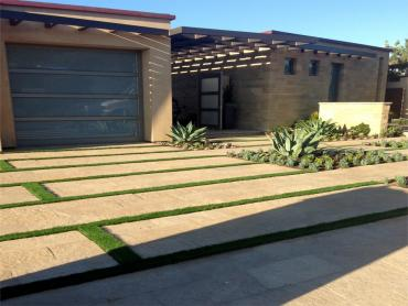 Artificial Grass Photos: Plastic Grass Edna, California Lawns, Front Yard