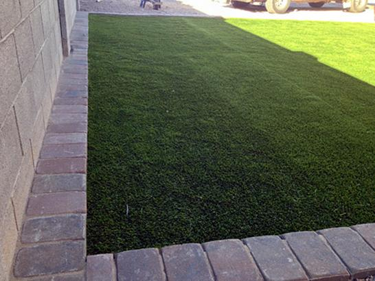 Artificial Grass Photos: Plastic Grass Mi-Wuk Village, California Cat Grass, Small Front Yard Landscaping