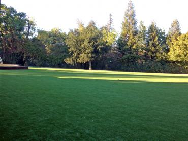 Artificial Grass Photos: Plastic Grass Pine Flat, California Gardeners, Recreational Areas