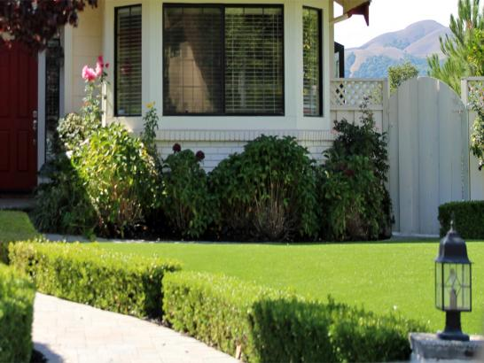 Artificial Grass Photos: Synthetic Grass Camino, California Lawn And Garden, Front Yard Landscaping Ideas