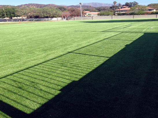 Artificial Grass Photos: Synthetic Grass Cost Catheys Valley, California Gardeners