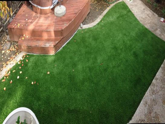 Artificial Grass Photos: Synthetic Grass Cost Shandon, California Backyard Playground, Backyard Designs