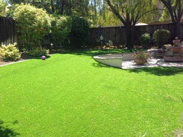 Artificial Grass Photos: Synthetic Grass Cost Woodville, California Lawn And Landscape, Backyard Garden Ideas