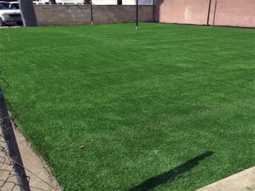 Artificial Grass Photos: Synthetic Grass La Selva Beach, California High School Sports
