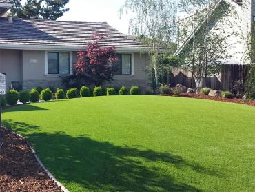 Artificial Grass Photos: Synthetic Grass San Miguel, California Rooftop, Front Yard Landscape Ideas
