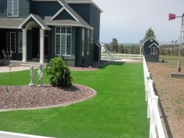 Artificial Grass Photos: Synthetic Grass South Taft, California Lawn And Garden, Front Yard Design