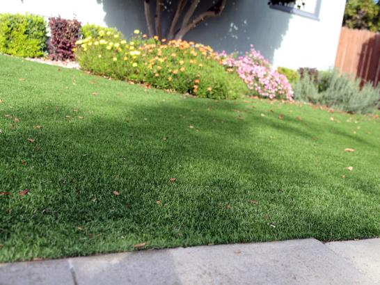Artificial Grass Photos: Synthetic Grass Volta, California Landscape Ideas, Small Front Yard Landscaping