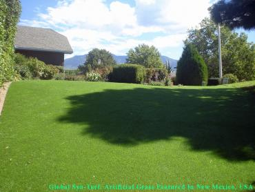 Artificial Grass Photos: Synthetic Lawn Clovis, California Pictures Of Dogs, Small Backyard Ideas