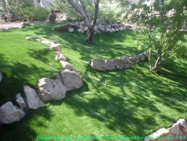 Synthetic Lawn Easton, California Roof Top, Pavers artificial grass