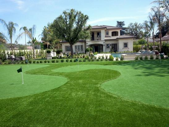 Artificial Grass Photos: Synthetic Lawn Hornitos, California Putting Green Grass, Front Yard Ideas