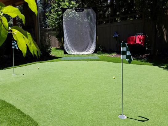 Artificial Grass Photos: Synthetic Lawn Mission Hills, California Landscaping Business, Backyard Makeover