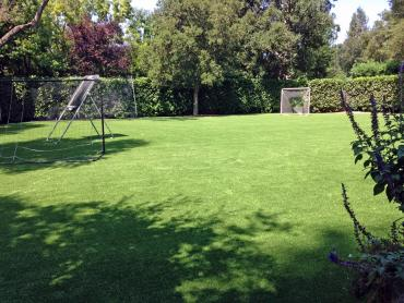 Artificial Grass Photos: Synthetic Lawn Panorama Heights, California Rooftop, Small Backyard Ideas