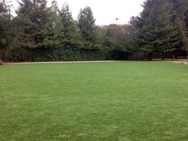 Artificial Grass Photos: Synthetic Lawn Pasatiempo, California Lawns, Recreational Areas