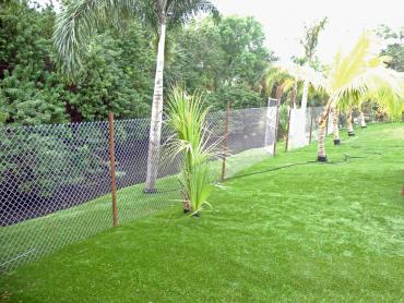Artificial Grass Photos: Synthetic Lawn Prunedale, California Gardeners, Backyard Landscaping Ideas