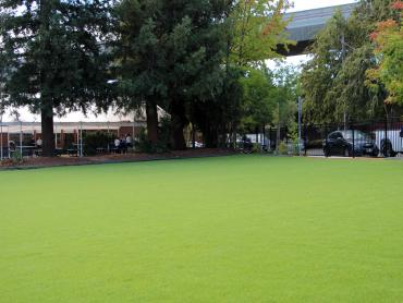 Artificial Grass Photos: Synthetic Lawn Sisquoc, California Rooftop, Commercial Landscape