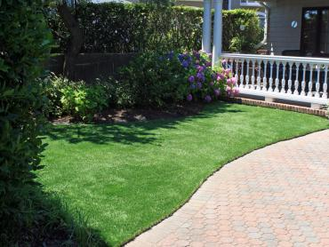 Artificial Grass Photos: Synthetic Turf Fairmead, California Backyard Playground, Front Yard Design