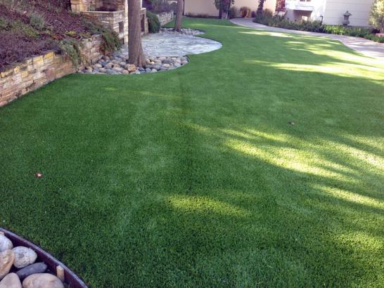 Artificial Grass Photos: Synthetic Turf Parlier, California Pet Paradise, Backyard Landscaping Ideas