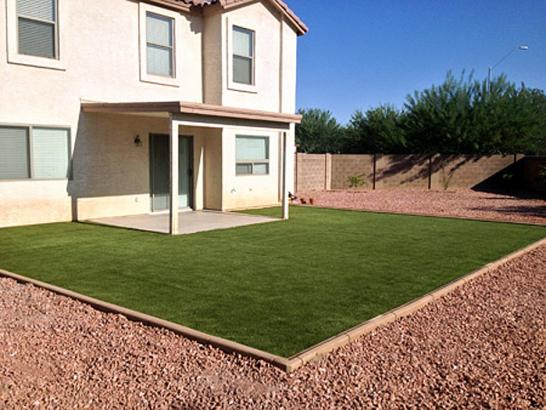 Artificial Grass Photos: Synthetic Turf San Juan Bautista, California Landscape Rock, Backyard Ideas