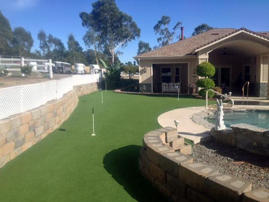 Artificial Grass Photos: Synthetic Turf Supplier Ahwahnee, California Gardeners, Backyard Designs