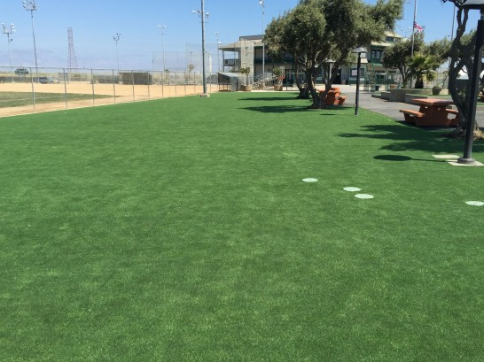 Artificial Grass Photos: Synthetic Turf Supplier Alum Rock, California Home And Garden, Parks