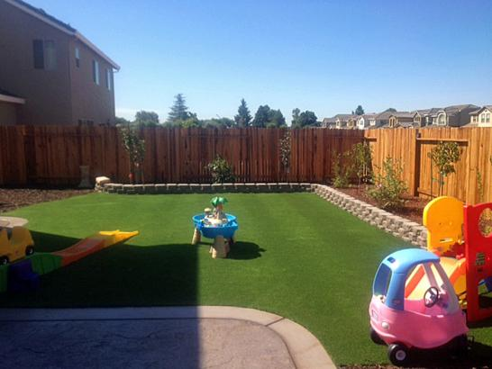 Artificial Grass Photos: Synthetic Turf Supplier Hartland, California Lawn And Garden, Backyard Landscape Ideas