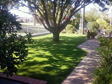 Artificial Grass Photos: Synthetic Turf Supplier Los Osos, California Backyard Deck Ideas