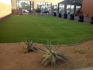 Artificial Grass Photos: Synthetic Turf Supplier Loyola, California Landscape Photos, Commercial Landscape