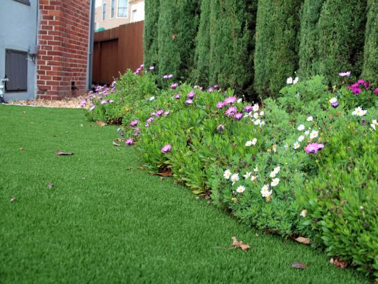 Artificial Grass Photos: Synthetic Turf Supplier Oakdale, California Home And Garden, Front Yard Landscaping Ideas