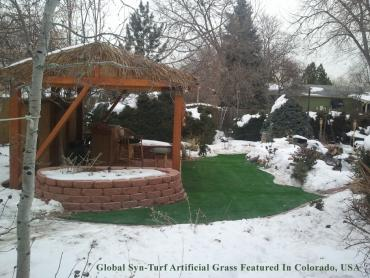 Artificial Grass Photos: Synthetic Turf Supplier Parlier, California City Landscape, Backyard Landscaping