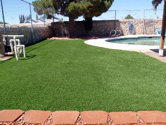 Artificial Grass Photos: Turf Grass Ballico, California Cat Playground, Kids Swimming Pools