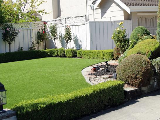 Artificial Grass Photos: Turf Grass Poplar-Cotton Center, California Rooftop, Front Yard Ideas