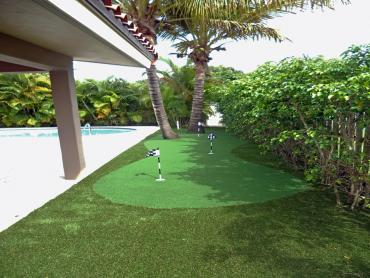Artificial Grass Photos: Turf Grass Spreckels, California Landscaping, Backyard Design